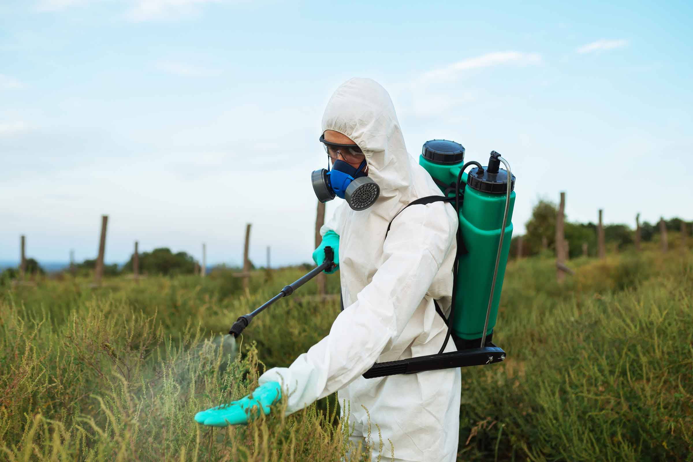 Agriculture pest control - Worker in protective workwear in weed control and spraying invasive plant