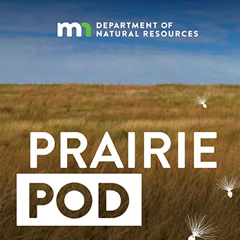 Minnesota DNR Prairie podcast logo