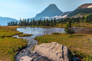 Crown of the Continent ecosystem: stream flows into pond with coniferous trees in midground and iconic mountain peak in background